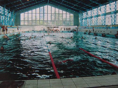 Дворец водного спорта имени В. С. Митофанова