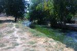 salar3