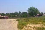 Слева огромный пустырь заросший пока еще зеленой травой.