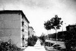 Дома № 62, № 64 и т.д. на 2-м квартале вдоль Волгоградской улицы в 1965 году