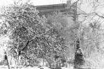 zima2-v-Tashkente