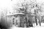 zima6-v-Tashkente