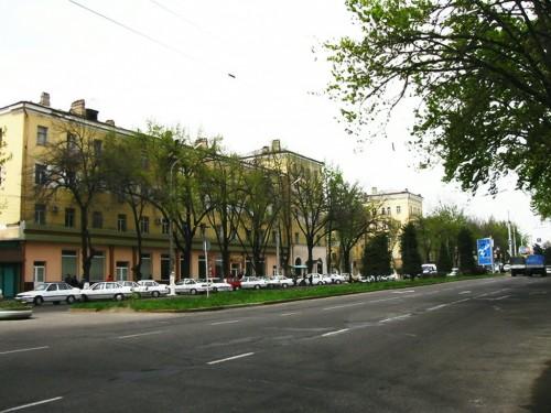 2 здания возле пединститута_2009