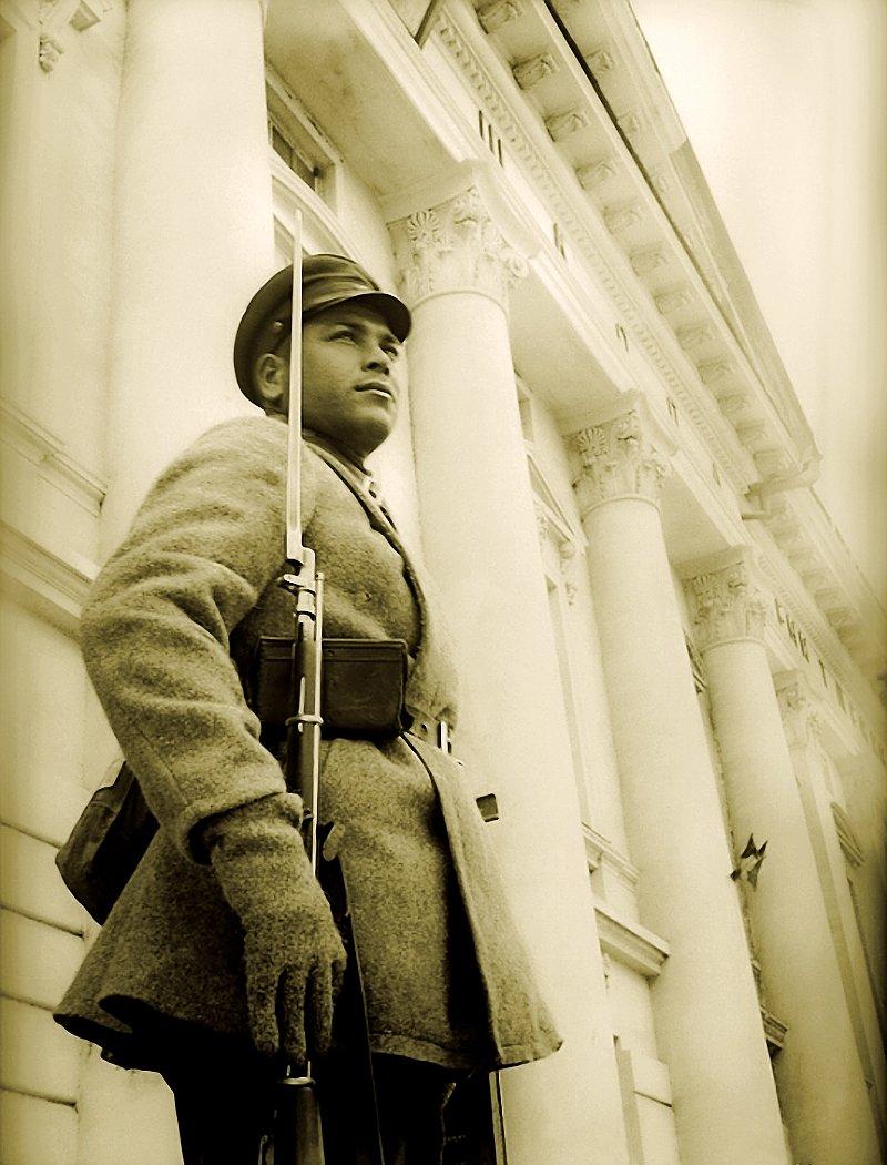 представляет солдат в карауле картинки моде самые