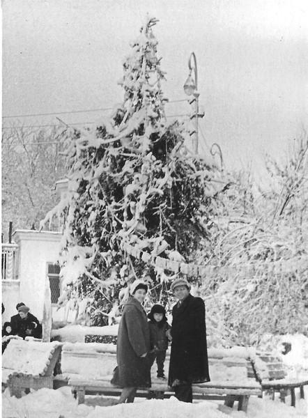 снег в Ташкенте парк перед дворцом пионеров 1961 г.