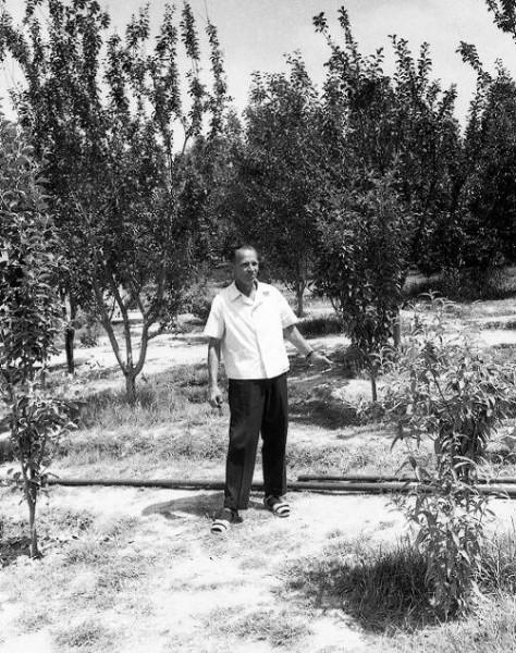 Иван Васильевич Ребров в школьном саду