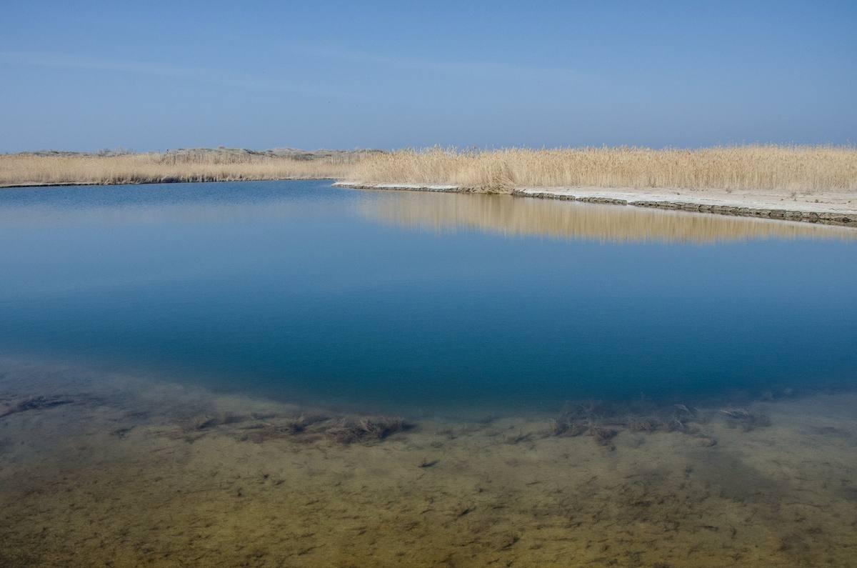открыток день айдаркуль красивое озеро фото рядом
